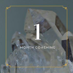1 month coaching